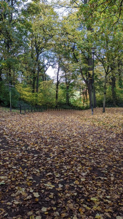 Norfolk Park, Sheffield